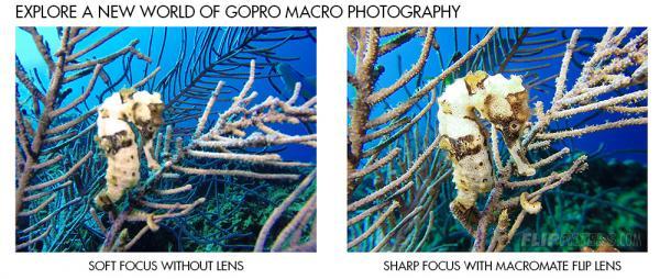 Backscatter Macromate Mini 55mm +15 Flip Macro Lens